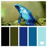 Classic+Blue+8